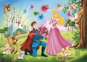 Aurora-and-Phillip-disney-princess-32398902-900-641
